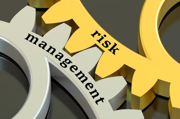 Management de la performance et du risque